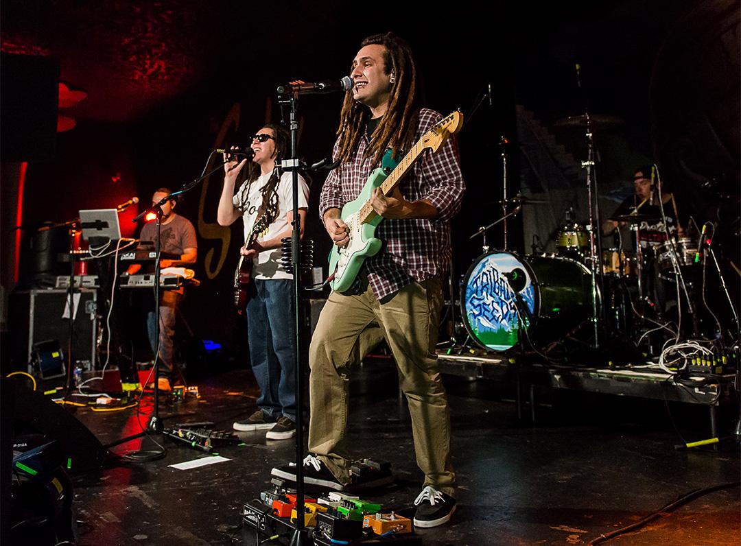 Tribal Seeds: Representing Reggae-Rock - Seattle Music News